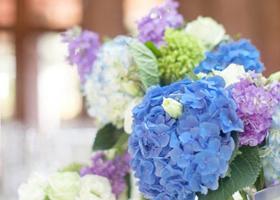 春季婚礼选什么花